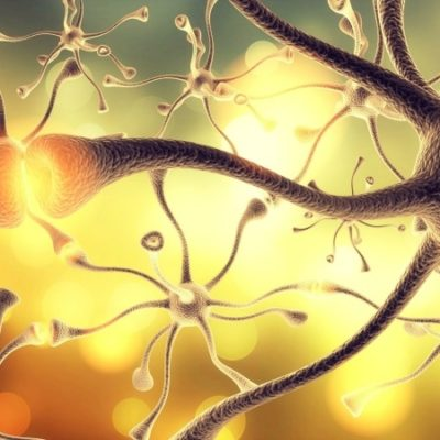 New Treatment Could Mean the End of Alzheimer's Disease